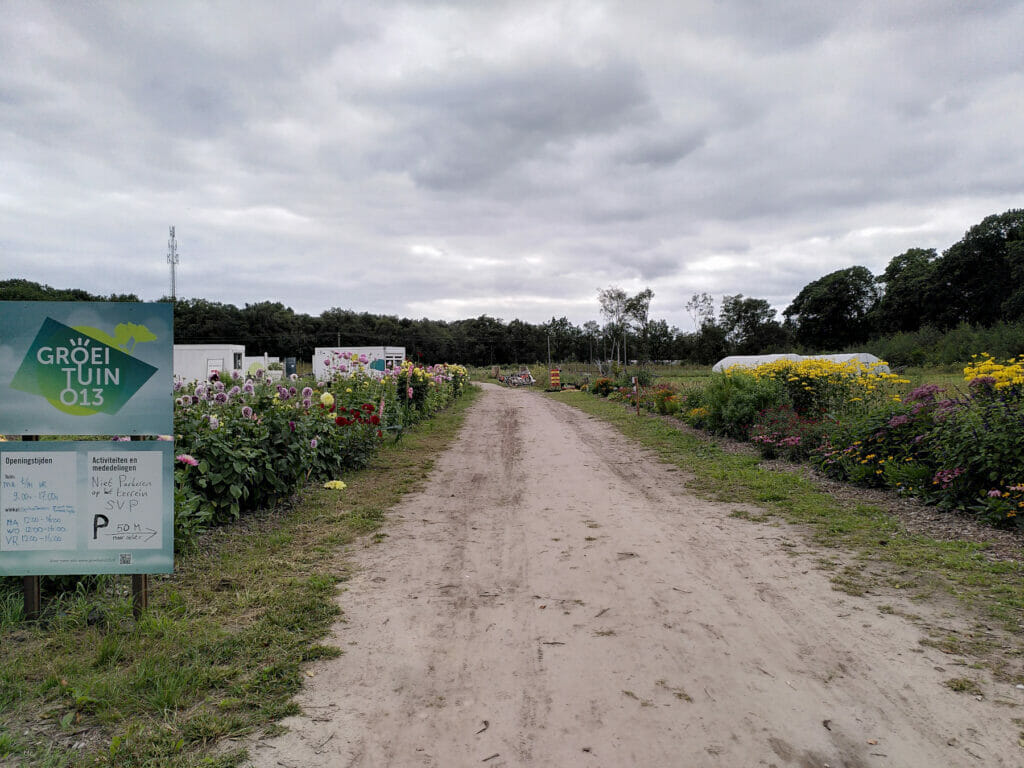 Dagboek/weblog september: GroeiTuin013, Reeshofdijk 30, 5044 VB Tilburg